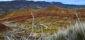 Painted Hills Fossil Dig 4 by Singing-Wolf-12