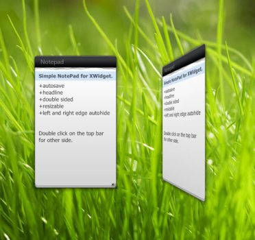 Simple NotePad for XWidget by Snoranges