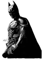 Dark Knight by StevenWilcox
