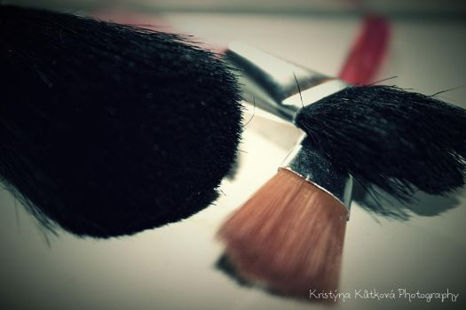 Brushes by KristeeSanders