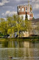 tower of novodevicheva  monastery by Lyutik966