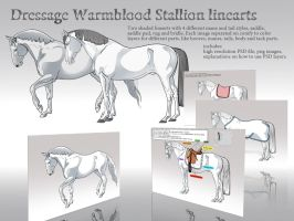 Dressage Warmblood Stallion Shaded Linearts by Templado