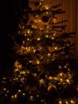 Christmas Tree by Sabbelbina