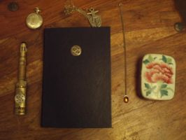 The Diary of Impossible Things by steevi