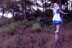 Alice In Wonderland 3 by Sefora-san