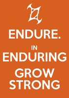Endure. In enduring, grow strong. by kemayo