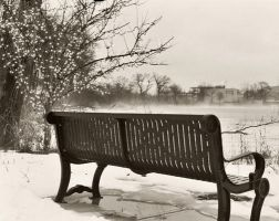 Winter's Bench by torifanning