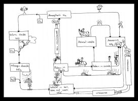 The Nitrogen Cycle by Pianochick66