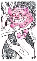 Cheshire by i-s-p