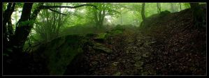 The Trail of the Bygone by LG77