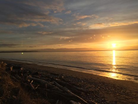 Sun on the Pacific by Rommel101