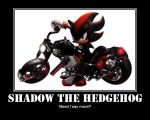 Shadow the Hedgehog by Drack99