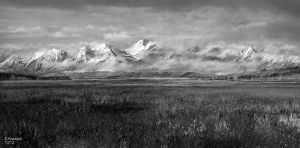 sketch of a  tundra scene by andrekosslick