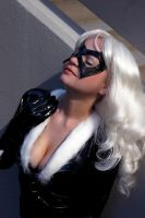 Black Cat 9 by AlisaKiss