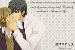 Junjou Terrorist wallpaper by joanamysts