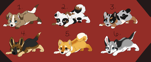 Puppy Adoptables by KatsaKitty