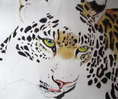 leopard drawing by Leanna7117