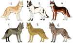 Dog Adoptables 002 - OPEN by Gynadopts