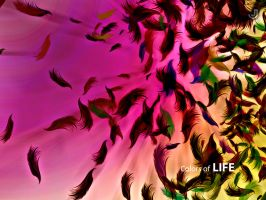 Colors Of Life by jeetdesignz