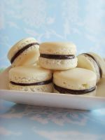 Macarons a la vanille by dabbisch