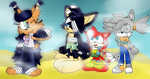 Sonic Boom: Nicole and team familly by Laura10211