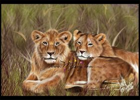Two Lions by JonyRichardson