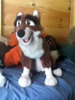 my balto plush came today by dogmaster22