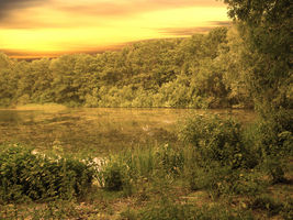 Premade Background Forest Lake - stock by Magic-Komplex