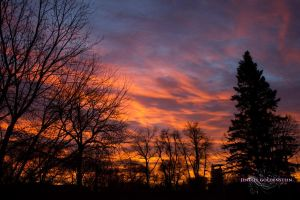 Winter Sunrise by jenellegoldenstein