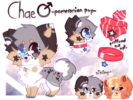 = Chae Ref = April 2017 = by ChaiFoxi