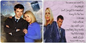 WoL, Doctor and Rose fanmix by triskeleanna