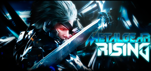 raiden by hamfr1