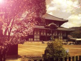 Japan Todaiji temple by yupon
