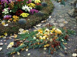 Flowers and winter squash by Kitty-Amelie