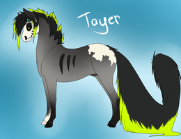 Tayer ref sheet. by Rather-Be-Raving