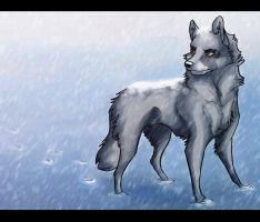 White out by silver303