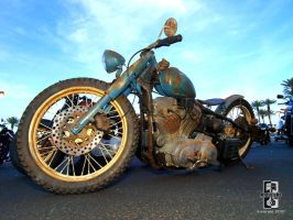 Ratty Bobber Blues by Swanee3
