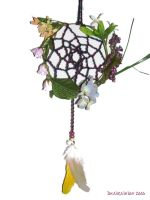 Spring Loom Dreamcatcher by Draikairion