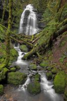 Bridge Creek Falls by 11thDimensionPhoto