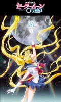 Sailor Moon Crystal by smithers456