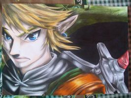 Link from the Legend of Zelda (twilight princess) by Tenemur