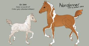 Nordanner foal 2044 - deisgn by Ikiuni