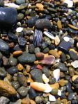 Sand from Yachats by NeddyPatches