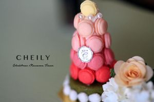 Christmas Macaron tower by PetitDeCherries