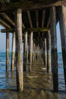 Under Romeo's Pier by FeralWhippet