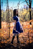 Alice cosplay [9] by AnnLycoris