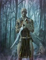 Warrior in enchanted woods by gmotier