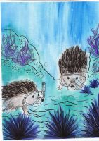 Underwater Hedgies by Lady-KL