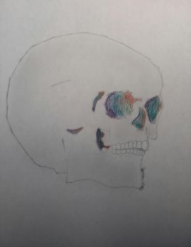 Painted Skull by msmusic137