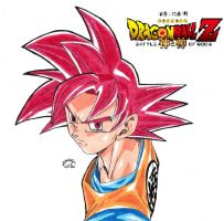 Dragonball Z - Goku Super Sayan God Colour!!! by TriiGuN
